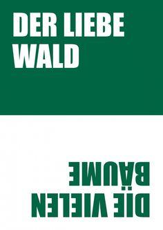 Wald & Bäume | 180° | Echte Postkarten online versenden | MyPostcard.com