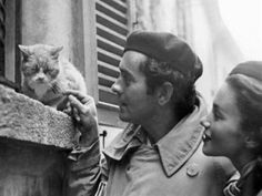 Tyrone Power, Linda Christian y el gato