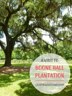 A VISIT TO BOONE HALL PLANTATION, SOUTH-CAROLINA, USA | http://lilistravelplans.com