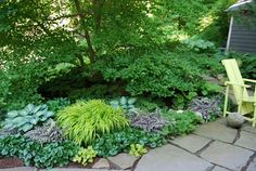 European Ginger, Japanese Painted Ferns, Blue-Green Hostas, and light green Hakone Grass.