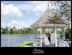 Buena Vista Palace Intimate Wedding by Sensational Ceremonies