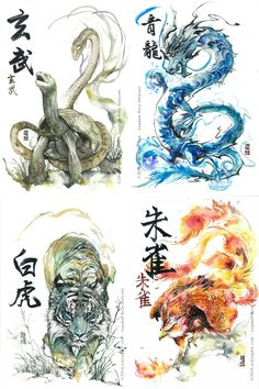 Image of Four Symbol art Tortoise Tattoo, Art Chinois, Art Watercolor, Japanese Dragon Tattoos, Japanese Artwork, Dragon Artwork, Japan Tattoo, Dragon Tattoo Designs, Fantasy Creatures