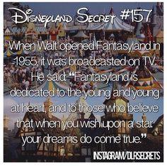 Ahhh I love Walt Disney! Disneyland Secrets, Disney Secrets, Disneyland Trip, Disney Tips, Disney Vacations, Disneyland History, Family Vacations, Cruise Vacation, Disney Nerd