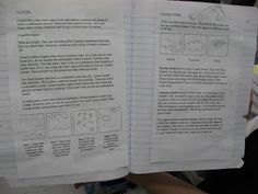 Science Notebooking: inquiry
