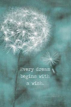 Dandelion Quotes, Dandelion Wall Art, Dandelion Wish, Dandelion Wallpaper, Dandelion Painting, Wish Quotes, Words Quotes, Sayings, Dream Quotes