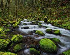 Gorton Creek, Columbia River Gorge, Oregon