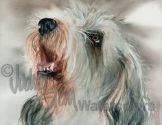 PETIT BASSET Griffon Vendeen PBGV Pet Portrait Art by k9stein, $22.50