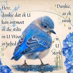 Good Morning Greetings, Good Morning Wishes, Good Morning Quotes, Lekker Dag, Afrikaanse Quotes, Goeie More, Inspirational Qoutes, Special Quotes, Prayer Quotes