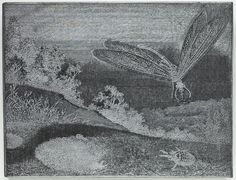 Woodblock depicting a dragonfly, wood, one of a collection of woodblocks of illustrations used by W. & R. Chambers Ltd, 1840s - early 20th century