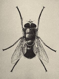 Vintage Insect Fly Line Graphic Iron On Tote by EverythingGraphic, $0.99