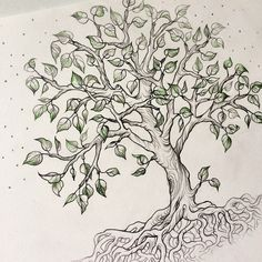 Banyan tree vector hand drawn 43 Ideas for 2019 Tree Of Life Art, Celtic Tree Of Life, Tree Art, Outline Drawings, Art Drawings, Geometric Trees, Tree Sketches, Watercolor Trees, Wall Art Designs