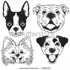 Bulldog Head Logo - ClipArt Best   reace   Pinterest ...