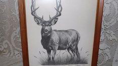 VTG DEER BUCK ETCHING SKETCH PICTURE WOOD FRAME SIGNED G. BEASON 945/1000 1982