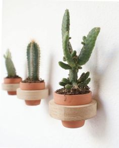 Wall Pots by Studio Antal
