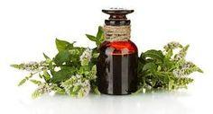 Image result for best essential oil brands