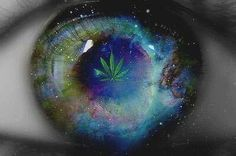 Don't be quick to judge ..see what I see smoke some weed get medicated open your mind the posibilities are endless.