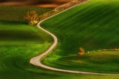 Path: The Way to Spring... by Pawel Kucharski