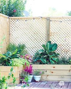 Marvelous Backyard Privacy Fence Decor Ideas on A Budget 27 Privacy Planter, Patio Privacy Screen, Diy Privacy Fence, Privacy Fence Designs, Patio Fence, Garden Privacy, Outdoor Privacy, Backyard Privacy, Backyard Fences