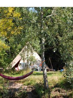 ottermeerhoeve - wouwse plantage meertje, paardenboerderij, workshops, kampvuur