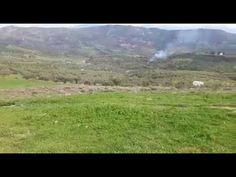 Ασκολύμπροι!!! Άγριο αγκαθωτό χορταρικό!!! - YouTube Country Roads, Mountains, Nature, Youtube, Travel, Naturaleza, Viajes, Trips, Nature Illustration