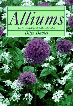 Alliums: The Ornamental Onions by Dilys Davies http://www.amazon.com/dp/0881922412/ref=cm_sw_r_pi_dp_u8m3tb0N8XNE8JX6