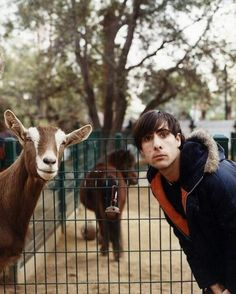 LOOKING LIKE ANIMALS. Jason Schwartzman looking like a Goat