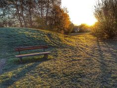 Beautiful winter light.   Flickr - Photo Sharing!