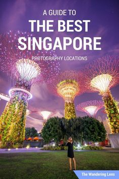 Singapore Photography Locations, A Guide to the Best Photo Spots Singapore Photography Location Guide by The Wandering Lens Singapore Travel Tips, Singapore Itinerary, Singapore Singapore, Singapore Sights, Asia Travel, Solo Travel, Travel 2017, Malaysia Travel, Wanderlust Travel