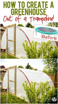 4 Easy Steps to Set-Up Your Own Backyard Aquaponics System - Tools And Tricks Club Aquaponics System, Aquaponics Diy, Hydroponics, Aquaponics Greenhouse, Diy Greenhouse Plans, Home Greenhouse, Greenhouse Wedding, Cheap Greenhouse, Trampolines