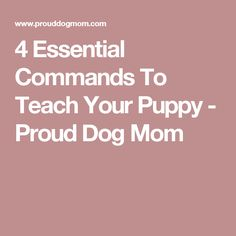 4 Essential Commands To Teach Your Puppy - Proud Dog Mom