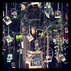 ...wedding memory tree...what a great idea!