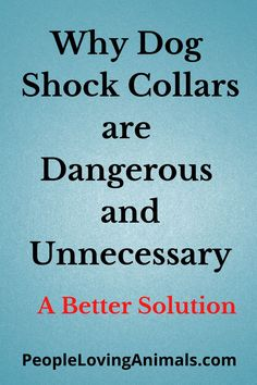 Dog Shock Collars - Why Dog Training with a Shock Collar is Dangerous and Unnecessary Dog shock collar training tips, how to use a shock collar for dog training, best dog shock collars, Dog Training, Puppy Training, Pet Health, Pet Care