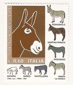 An Italian stamp printed in Italy , circs 2007, shows different breeds of donkeys,