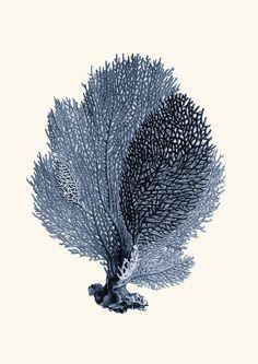 Wassily Kandinsky, Gustav Klimt, Claude Monet, Deco Pastel, Fan Coral, Coral Print, Art Plastique, Printable Art, Printables