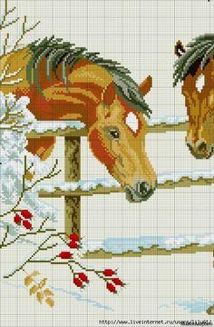 Gallery.ru / Фото #52 - лошади - zhivushaya