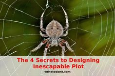 inescapable plot - sidre in web
