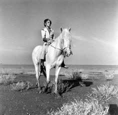 Still of Alain Emery in White Mane: The Wild Horse