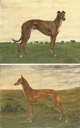S. Hyde-Clarke (British, 20th Century)  A prize greyhound in a landscape; and A prize greyhound in a landscape, with trees beyond