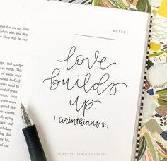 1 corinthians 8:1