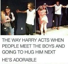 I wish I could meet them, but it is already 2016:( Harry does look adorable:)