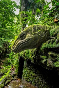 Stone guardian, Sacred Monkey Forest, Ubud, Bali looks like green leaves foliage dragon dinosaurs god head or giant lizard god in side of mountain , 15 most beautiful and breathtaking places in the world February 2015 Places Around The World, Oh The Places You'll Go, Places To Travel, Places To Visit, Around The Worlds, Foto Nature, Bali Travel, Angkor, Belle Photo