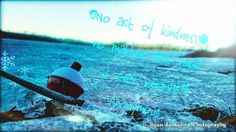 """""""No act of kindness, no matter how small is ever wasted."""" -Anonymous #TheHumanCondition"""