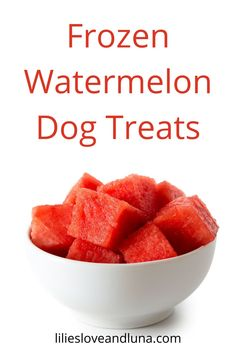 Easy to make frozen watermelon dog treats with only 1 ingredient. Frozen Dog Treats, Frozen Watermelon, Dog Treat Recipes, Slushies, Vegan Vegetarian, A Food, Food Processor Recipes, Fruit, Dogs