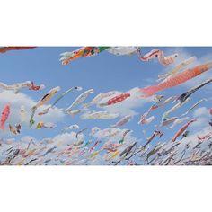 去年より人が多かった気がするー!  しかしちょー暑かった    #photooftheday #iG_4every1 #stilllife_archive #instagramjapan #igersjp #mwjp #wu_japan #indies_gram #team_jp_ #team_jp_西 #東京カメラ部 #ig_worldclub #ig_japan #igmasters #worldunion #ink361_asia #RECO_ig #pics_jp #ig_photooftheday #screen_archive #indies_minimal #indies_minimal #myflagrants #hueart_life #icu_japan #rsa_minimal #16x9 #16x9club