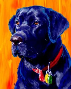 Black Lab Labrador Retriever Art And Gifts; Love the use of complementary colors! Black Labs Dogs, Black Labrador, Paint Your Pet, Poor Dog, Labrador Retriever Dog, Arte Pop, Animal Paintings, Dog Art, I Love Dogs