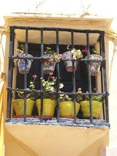 Flower window, Spain