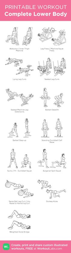Complete Lower Body