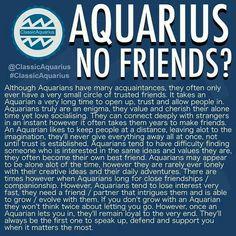 Aquarius Zodiac t shirt January February born t-shirt women girl Aquarius Traits, Aquarius Quotes, Aquarius Woman, Age Of Aquarius, Capricorn And Aquarius, Zodiac Signs Aquarius, Aquarius Season, Daily Horoscope Aquarius, Aquarius Lover