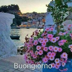 Good Morning Coffee, Good Morning Quotes, Italian Greetings, Italian Memes, Italian Phrases, Singing Time, Sunset Wallpaper, Good Morning Everyone, Coffee Quotes