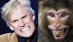 Gary Busey Monkey